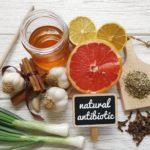 Natürliches Antibiotika selber machen: DIY